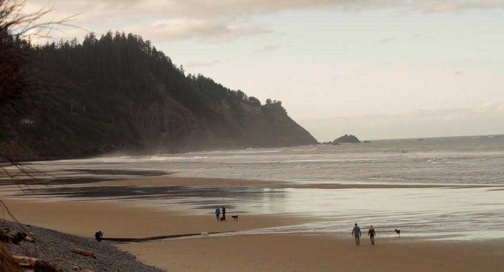 Cape Falcon Beach, Falcon Cove, Oregon