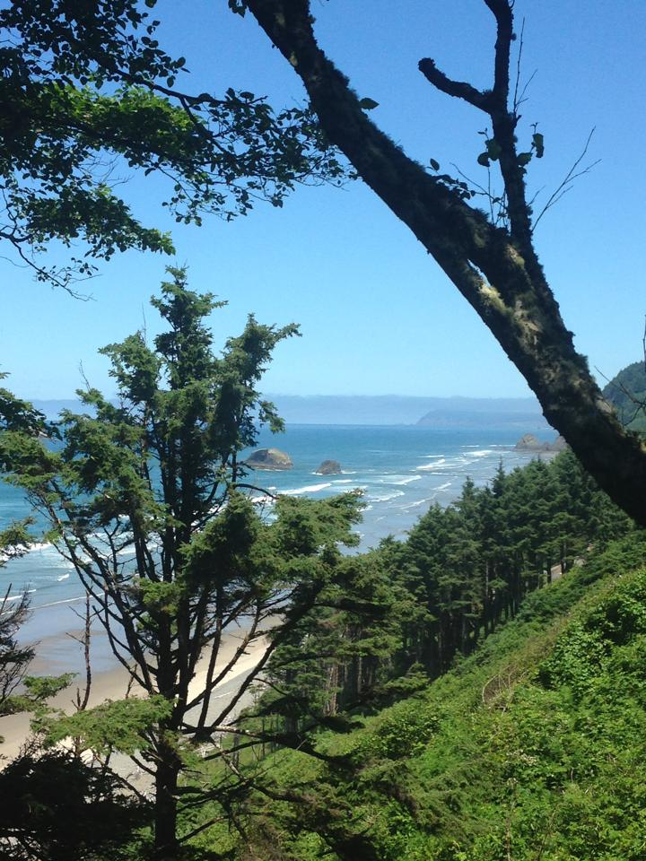 View from Beach House, Falcon Cove, Oregon