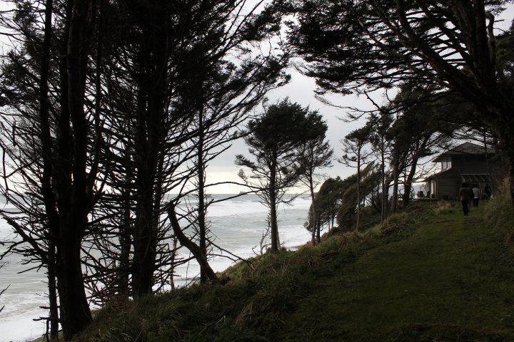 Beach House trail, Falcon Cove, Oregon